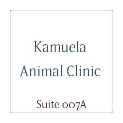 Kamuela Animal Clinic